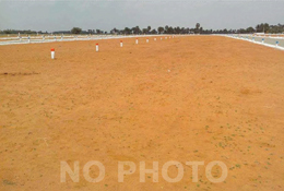 Open Plot at  Sircilla