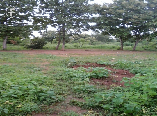 Open Plot at Bhagatnagar Karimnagar