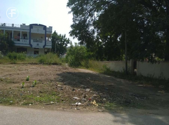 Open Plot at Balasamudram Warangal