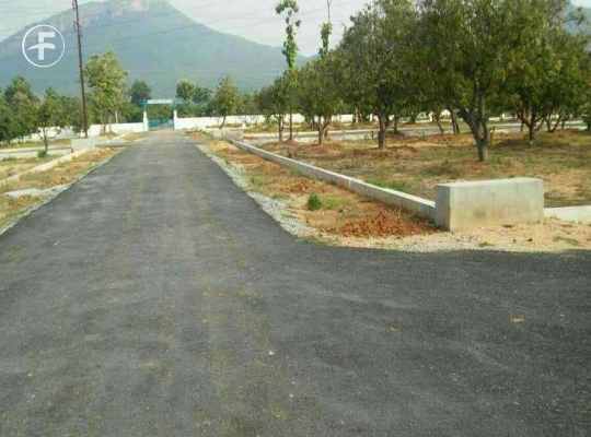 Open Plot at Papanaidupet Tirupathi