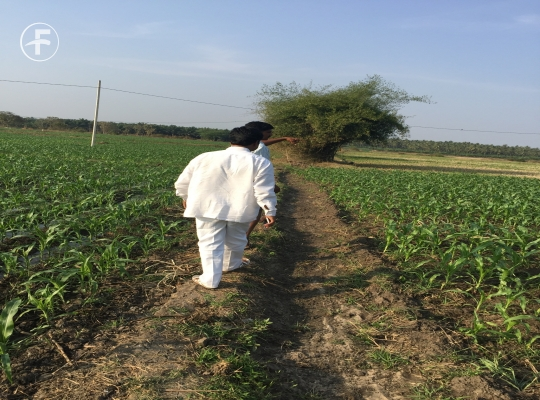 Agriculture Land for sale,buy at Jangareddygudem, West Godavari