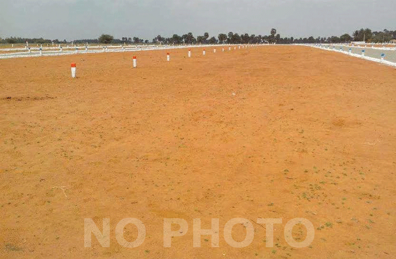 Open Plot at Anandapuram Visakhapatnam