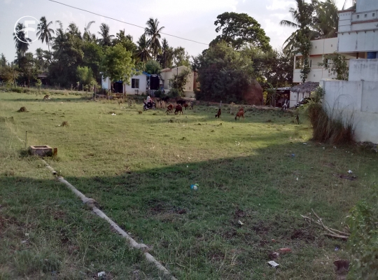 Open Plot at  Mudinepalli