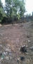 Open Plot at  Penamalluru Mahila Mandal Road